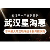 """星淘惠分享""""互联网+电商""""时代经济发展新模式"""